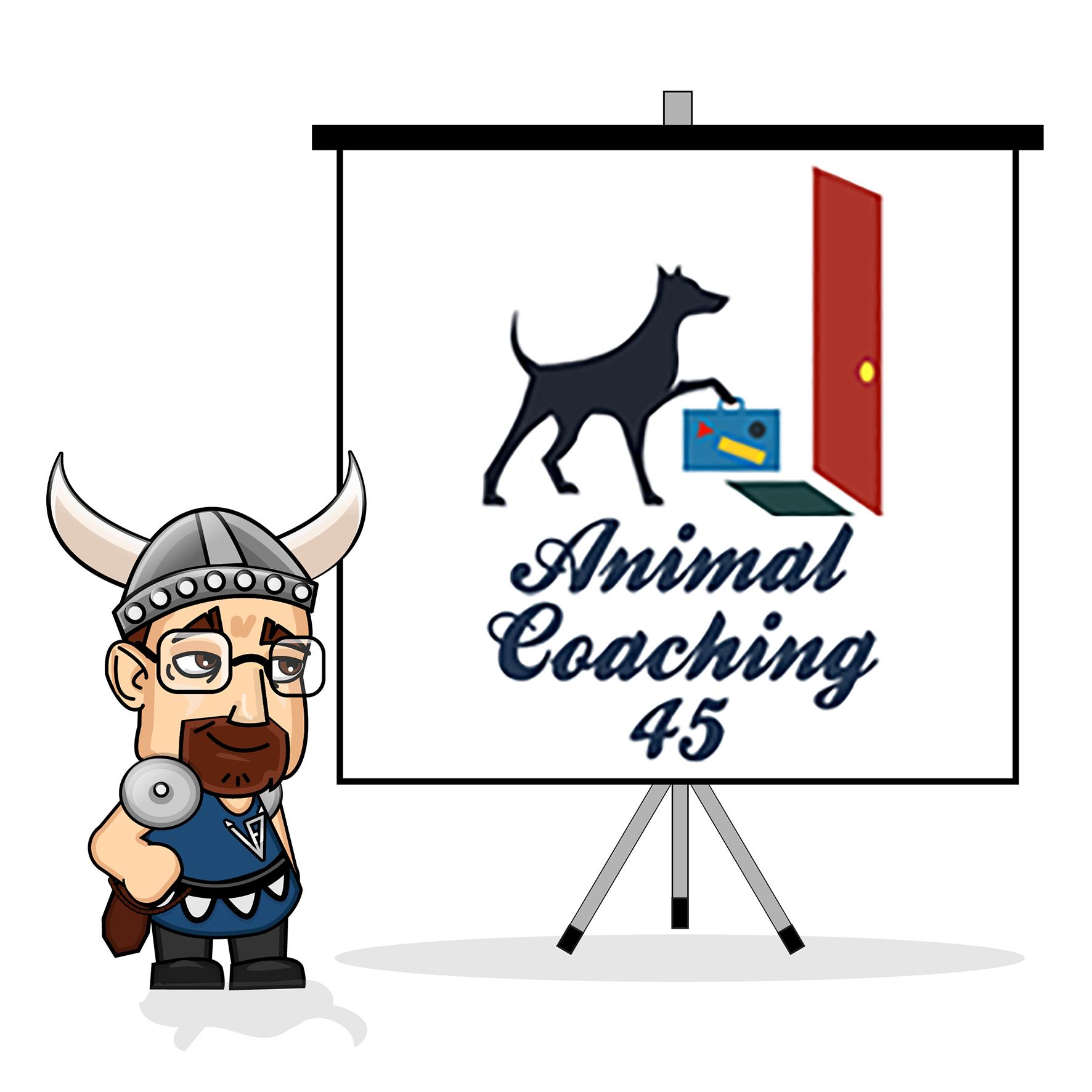 Le viking accompagne Animal Coaching 45