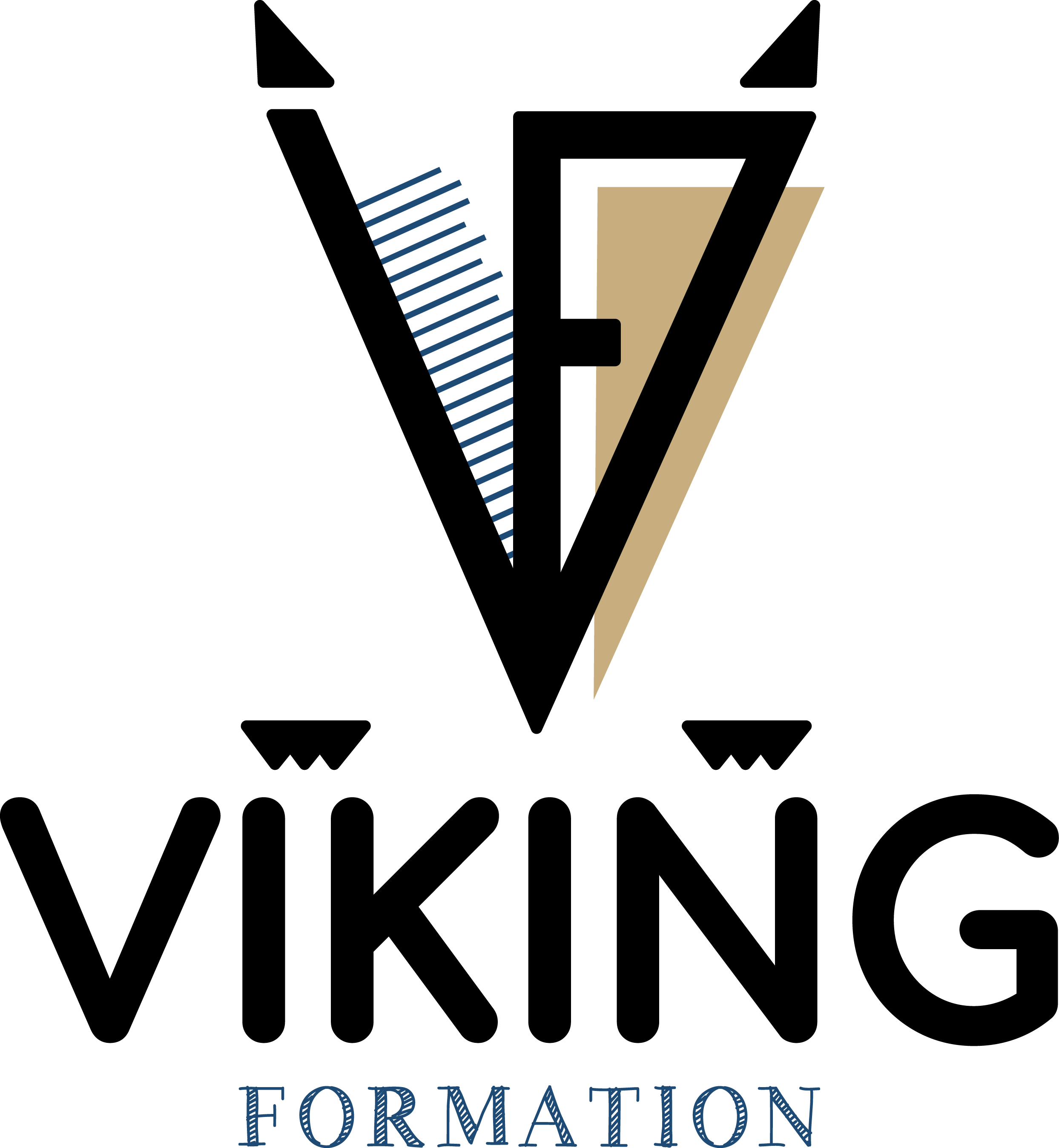 Viking Formation